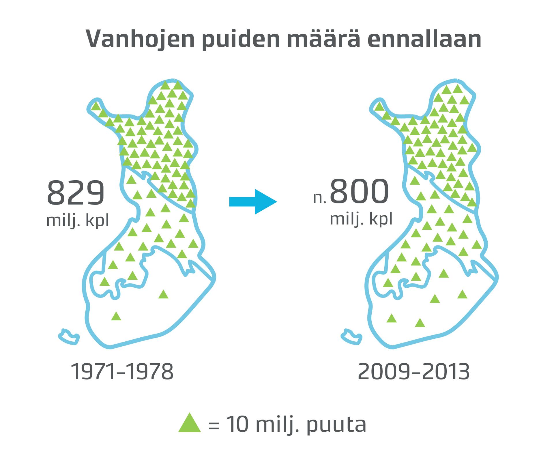 Ylivoimaisesti suurin osa vanhoista puista on pohjoisimmassa Suomessa. Enin osa niistä on läpimitaltaan melko pieniä.
