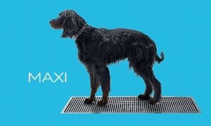 Kurasyöppö Maxi 600x1200 mm laattalattialle