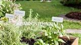 GreenCare-PuuCee ja kompostituotteet