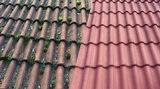 Sammaleet veks katoilta
