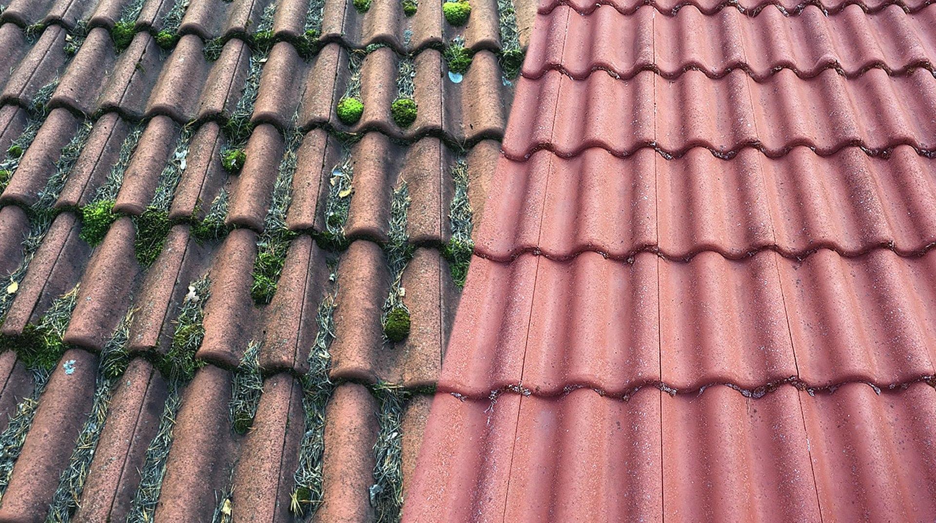 Sammaleet pois katoilta